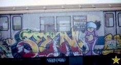 Doze (Kurl) X Seen TC5